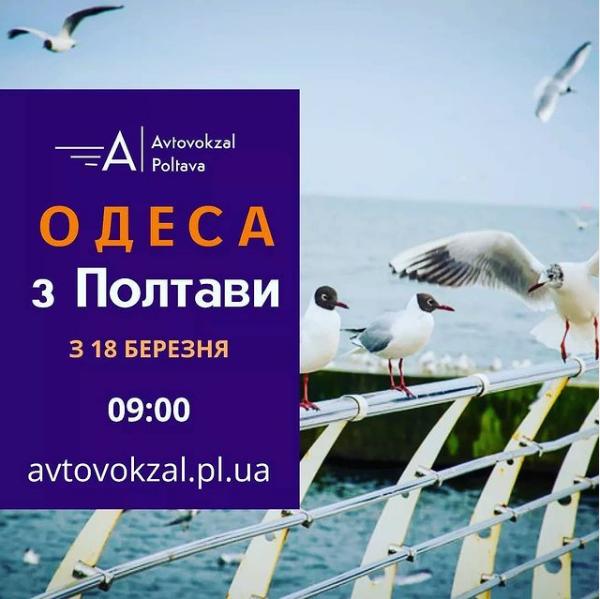 Всі знають, як добре в Одесі влітку
